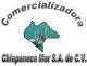 Logo Distribuidora Comercializadora Chiapaneca del Mar
